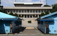 Ngư dân Triều Tiên giết đồng hương trên tàu rồi trốn sang Hàn Quốc