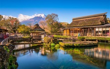 Đưa khách đến vùng từng bị thảm họa kép, Vietravel nhận giải cống hiến từ Nhật Bản