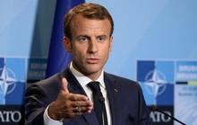 NATO chết não, Nga hoan nghênh