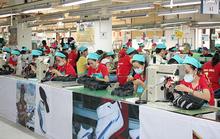 Bình Dương: Chủ động tìm việc làm mới cho công nhân mất việc