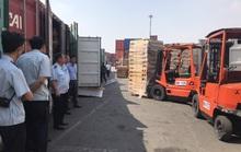 Phát hiện 25 container gỗ xẻ đội lốt gỗ cao su, trị giá 11 tỉ đồng