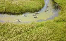 Năm Du lịch Quốc gia 2020: Hoa Lư – Cố đô ngàn năm