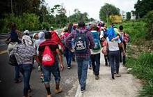 83,9% người di cư trong nước ở độ tuổi 15 - 39