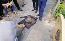 Thấy rùa nặng hơn 10 kg nổi ở hồ Gươm, người đàn ông câu trộm rồi cởi áo khoác phủ lên