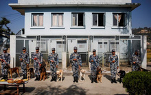 Nepal bắt giữ 122 nghi phạm Trung Quốc