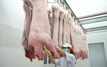Thị trường Tết có thêm thịt heo thảo mộc Sagri