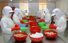 Châu Âu đóng cửa biên giới, xuất nhập khẩu của Việt Nam ảnh hưởng thế nào?