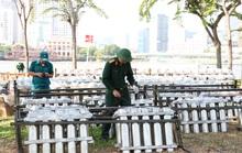CLIP: Cận cảnh trận địa pháo hoa ở TP HCM