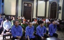 TAND TP HCM: Phần lớn khiếu nại là về thái độ, tác phong của thẩm phán và thư ký
