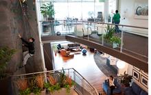 Nơi làm việc đẹp giúp nhân viên sáng tạo