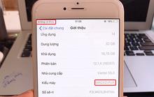 iPhone tại Việt Nam không nhận mạng sau khi lên iOS 12.1.4