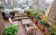 Phong cách thiết kế sân vườn đặc trưng cho tính cách gia chủ