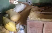 Gia đình một nông dân báo mất 49 cây vàng trị giá khoảng 1,8 tỉ đồng