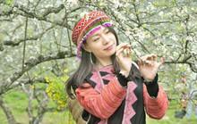 Thung lũng Nà Ka – Mùa hoa mận nở