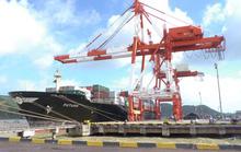 Gấp rút xử lý sai phạm bán cảng Quy Nhơn