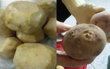 Sự thật việc trường mầm non bị tố cho trẻ ăn củ sắn mốc, khoai tây lên mầm