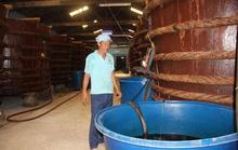 Áp quy chuẩn nước mắm công nghiệp cho nước mắm truyền thống là rất dở!