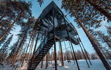 Báo Tây trầm trồ với căn nhà kính treo lơ lửng giữa rừng cây