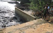 Bà Rịa - Vũng Tàu: Thu giữ bùn thải tại điểm nóng ô nhiễm để làm phân bón