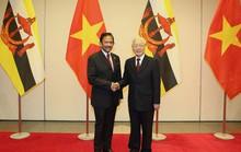 Việt Nam - Brunei thiết lập quan hệ đối tác toàn diện