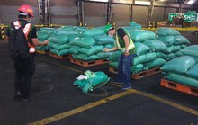 Philippines cảm ơn cảnh sát Việt Nam vụ bắt giữ đường dây ma túy khủng