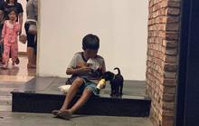 Cậu bé chia phần sữa cho cún con làm lay động nhiều người