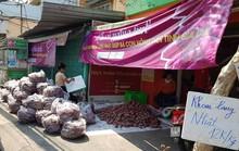 Lập chiến dịch giải cứu khoai lang giúp nông dân Gia Lai
