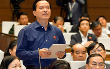 Ông Nguyễn Văn Pha: Xử lý các vụ xâm hại trẻ em còn chậm!