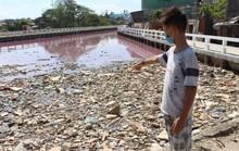 Người dân hoang mang vì nước kênh có màu đỏ lạ bất thường