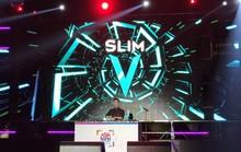 EDM Việt rơi vào lối hẹp