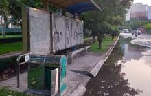 Ao, hồ giữa đường