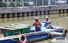 UBND TP HCM chỉ đạo giảm đàn cá ở kênh Nhiêu Lộc - Thị Nghè