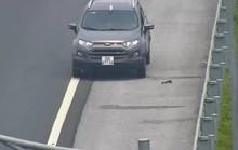 Phạt 7,5 triệu đồng, tước bằng lái 5 tháng với tài xế đi ngược chiều trên cao tốc