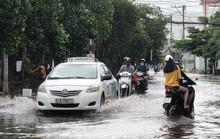 Khóc - cười sau cơn mưa vàng đổ xuống TP HCM