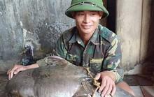 """Ngày lễ, thả câu bắt được cá ghé """"khủng"""" 22 kg, dài hơn 1 m"""