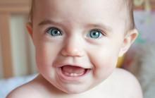 Đánh răng cho bé chưa... mọc răng?
