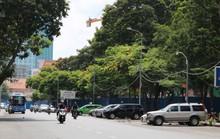 Bắt đầu đổi chủ bãi đỗ ôtô dưới lòng đường