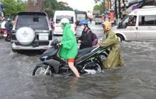 Sau cơn mưa trắng trời, CSGT Bạc Liêu giúp dân di chuyển trong biển nước