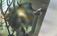 Thi thể hôi thối dưới hầm thang máy bệnh viện: Dùng tinh dầu sả khử mùi