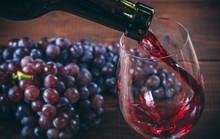 Phát hiện thần dược trị cao huyết áp trong rượu vang đỏ