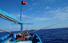 Một triệu lá cờ Tổ quốc cùng ngư dân bám biển: Thiêng liêng cờ đỏ sao vàng giữa biển