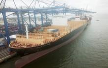 Hải Phòng đón tàu container khủng nhất từ trước tới nay dài 330 m