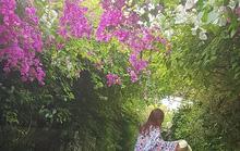 Những góc ảnh đẹp tựa trời Tây tại FLC Sầm Sơn