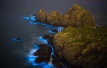 Nước mắt xanh ma quái lan rộng trên biển Trung Quốc