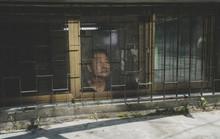"""Nghệ sĩ Việt ấn tượng với phim """"Ký sinh trùng"""""""