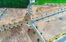 Xúc đất đổ lên đường nhựa để trả nguyên hiện trạng tại dự án Alibaba phân phối