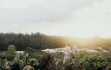 Lạc vào thước phim 'hoa vàng trên cỏ xanh' tại Phú Yên