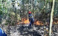 Đà Nẵng: Cháy lớn suốt 5 giờ khiến 3 hecta rừng bị thiêu rụi