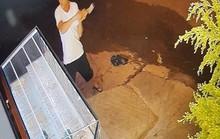 Truy bắt đối tượng dùng búa đập tủ kính, trộm tiệm vàng