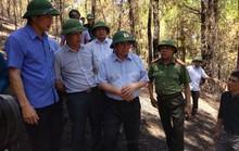 Trưởng Ban Tổ chức Trung ương Phạm Minh Chính thị sát vụ cháy rừng kinh hoàng ở Hà Tĩnh